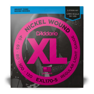 D'Addario EXL170 5 String Bass Strings 45-130