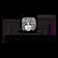 Electro Harmonix logo
