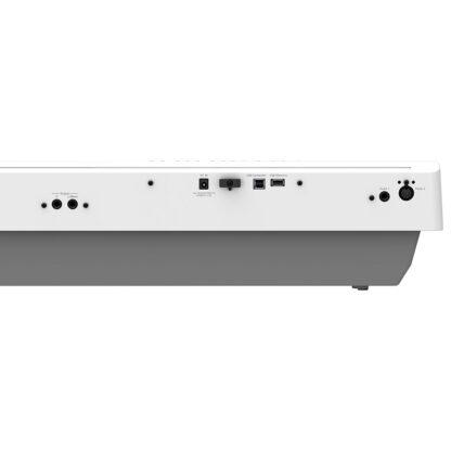 Roland FP-30X White Back Panel
